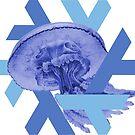 NixOS 18.09 Jellyfish by mogorman