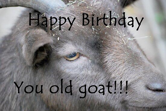 Happy birthday goat - photo#35