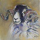Swaledale Ram by Sue Nichol