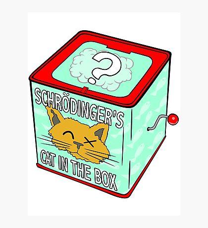 Schrödinger's Cat in the Box Photographic Print