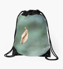 Sidecut Metropark Leaf Attached to a Spider Web Drawstring Bag