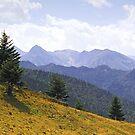 Ariége Pyrenées 3 by WatscapePhoto
