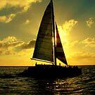 Sea Cruise by Sean Jansen