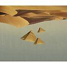 Desert Untitled No. III by ERIC ZELINSKI