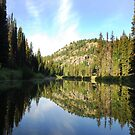 Morning on Upper Payette River by Janet Houlihan