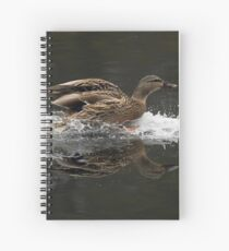 Clear for Landing Spiral Notebook