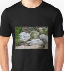 Boulders Unisex T-Shirt