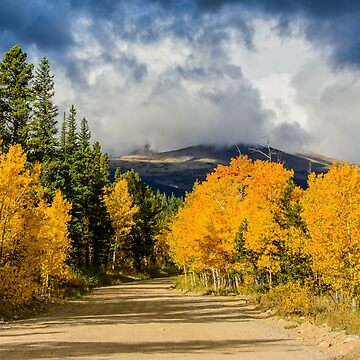 Fall Rocky Mountain Road  by nikongreg