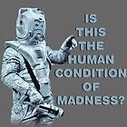 Is this the human condition of madness? by kryten4k
