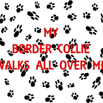 my border collie walks all over me by marasdaughter