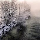 Cold and foggy Edge by Daidalos