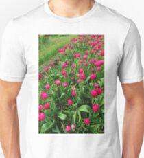 Tulip Fields T-Shirt
