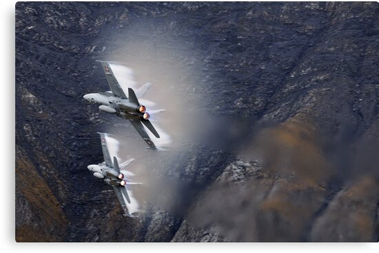 FA18 Hornet – Swiss Air Force by Ted Lansing