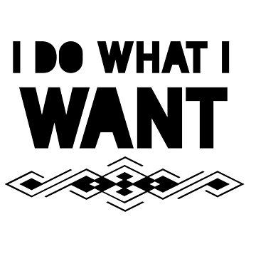 i do what i want by phys