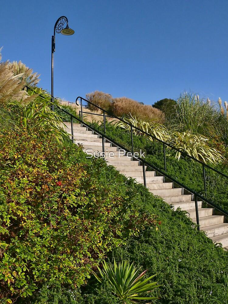 Lighting The Way ~ Langmoor-Lister Gardens by Susie Peek