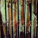 Fence by Orla Cahill Photography