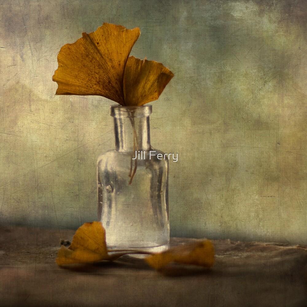 Ginkgo by Jill Ferry