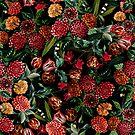 Magical Garden - II by Burcu Korkmazyurek