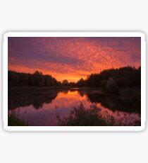 Sunrise over the Water's Edge Sticker