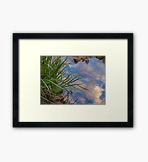 A Natural Juxtaposition Framed Print