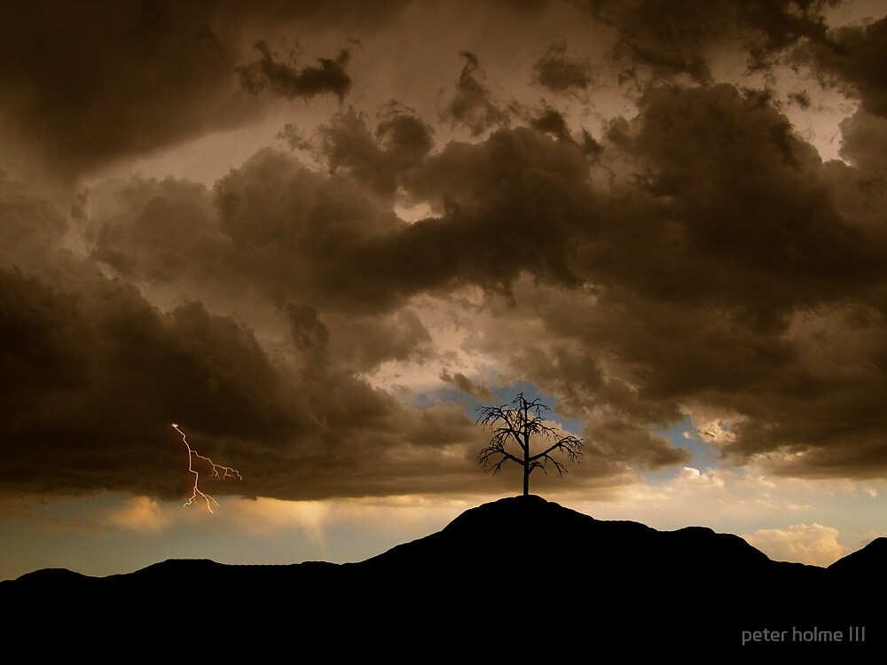 29 by peter holme III