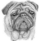 Pug - 2 by doggyshop