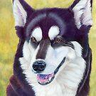 Siberian husky by doggyshop
