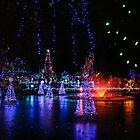 «luces de estanque congelado» de Perggals© - Stacey Turner