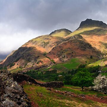 The Langdale Pikes by davidlewins