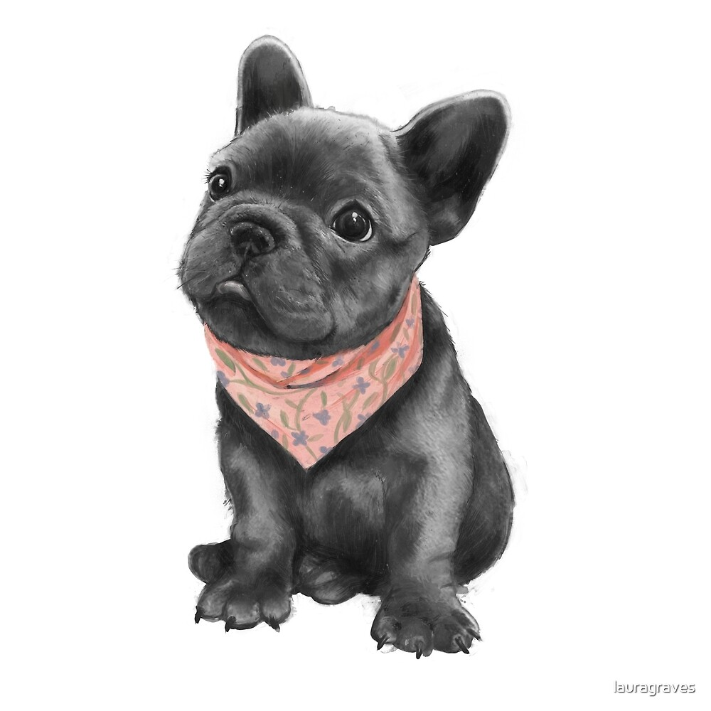 Parlez-vous frenchie by lauragraves