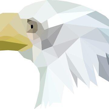 Bald Eagle by atelierwilfried