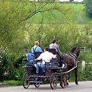 Sunday ride by Caroline Anderson