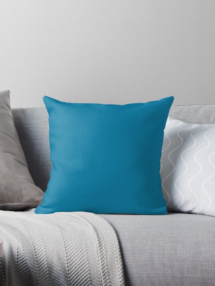 Beautiful Cushions/ Plain CG Blue by ozcushions