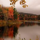 Fall At Pillsbury State Park, Washington, NH by Len Bomba
