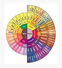 Coffee Flavor Wheel Photographic Print