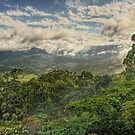 Tallebudgera Valley views by Murray Swift