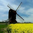 Stevington Windmill by Lisa Williams
