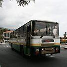 Leyland Utic bus by motorista