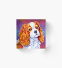 Colorful Cavalier King Charles Spaniel Dog Acrylic Block