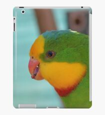 Close up with Superb Parrot iPad Case/Skin