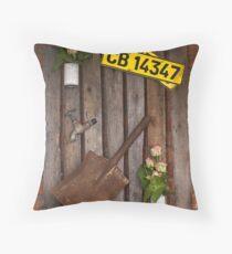 Wall Hanger 2 Throw Pillow