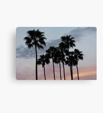 Tropical sunset with palm trees Canvas Print