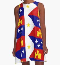 Flag of Acadiana A-Line Dress