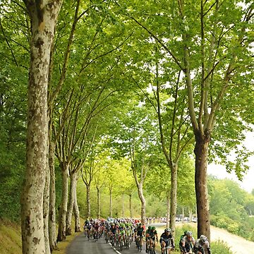 Tour de France by EamonF