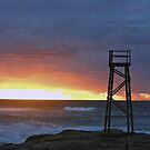 Sunrise at Redhead Beach - 3 by Margo Humphries