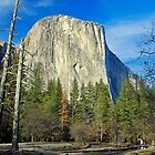 Yosemite, El Capitan by Michael Dietrich