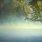 The Mists of Hunt Lake by Bendinglife