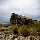 The Old Boat Shed by David Sundstrom