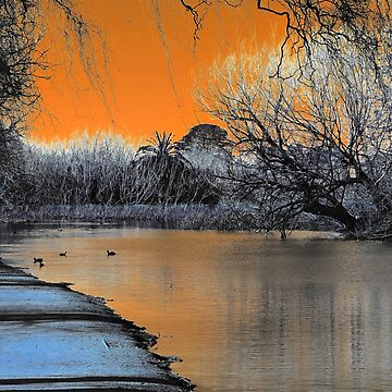 Lake Wendouree Winter Sunset by ycaporn