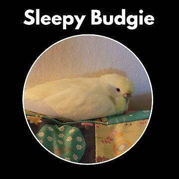 Sleepy Budgie by phys